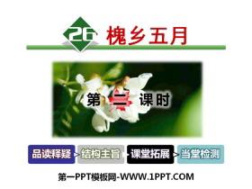 《槐乡五月》PPT下载