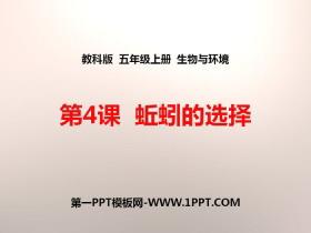 《蚯蚓的选择》生物与环境PPT下载