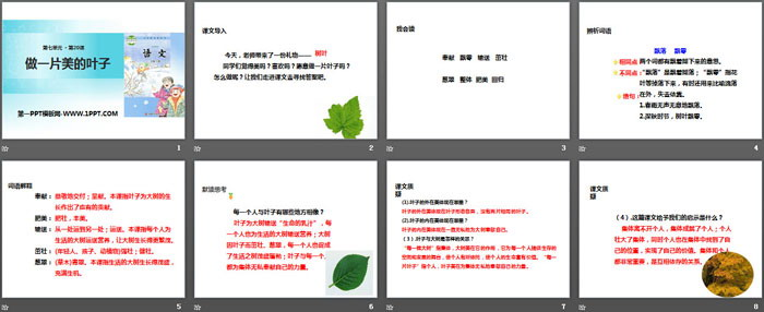 《做一片美的叶子》PPT教学课件