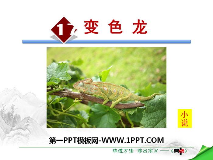 《变色龙》PPT精品课件