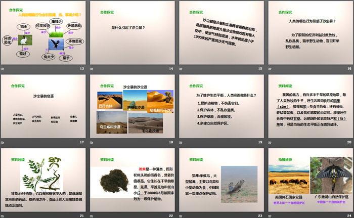 《维护生态平衡》生物与环境PPT下载