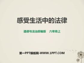 《感受生活中的法律》我们的守护者PPT教学课件