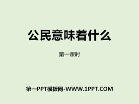 《公民意味着什么》我们是公民PPT(第一课时)