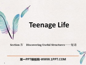 《Teenage Life》Discovering Useful Structures PPT