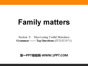 《Family matters》Section ⅡPPT