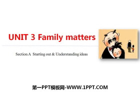 《Family matters》Section A PPT