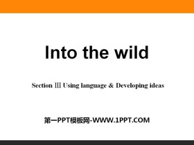 《Into the wild》Section ⅢPPT