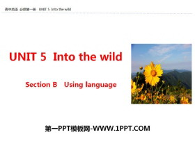 《Into the wild》Section B PPT