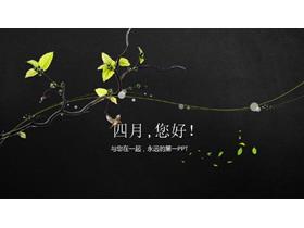 藤蔓植物背景的四月主题PPT模板
