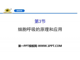 《细胞呼吸的原理和应用》细胞的能量供应和利用PPT