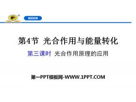 《光合作用与能量转化》细胞的能量供应和利用PPT下载