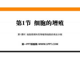 《细胞的增殖》细胞的生命历程PPT下载