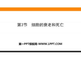 《�胞的衰老和死亡》�胞的生命�v程PPT�n件