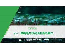 《细胞是生命活动的基本单位》走近细胞PPT教学课件