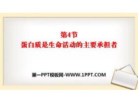 《蛋白质是生命活动的主要承担者》组成细胞的分子PPT