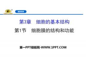 《细胞膜的结构和功能》细胞的基本结构PPT
