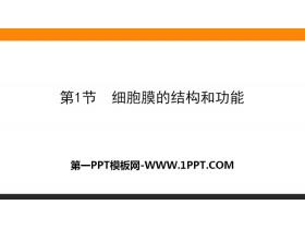 《细胞膜的结构和功能》细胞的基本结构PPT课件