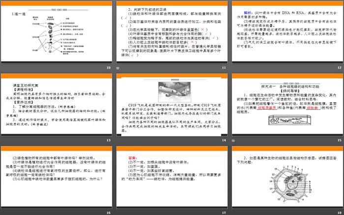 《细胞器之间的分工合作》细胞的基本结构PPT课件(第一课时)