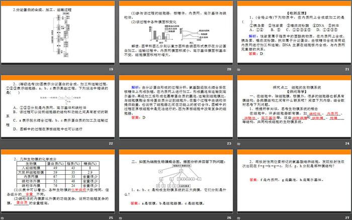 《细胞器之间的分工合作》细胞的基本结构PPT课件(第二课时)