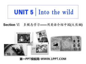 《Into the wild》Section Ⅵ PPT�n件