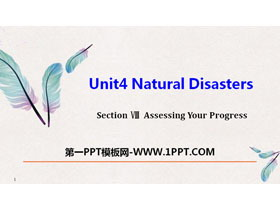 《Natural Disasters》Assessing Your Progress PPT