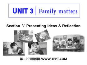 《Family matters》Section V PPT课件