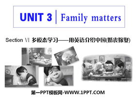 《Family matters》Section Ⅵ PPT课件
