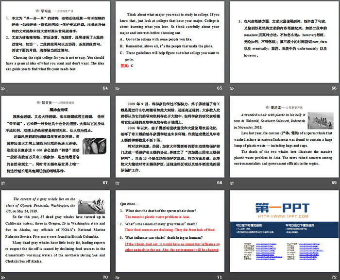 PPT - Into the Wild PowerPoint Presentation, free download ... |Into The Wild Powerpoint