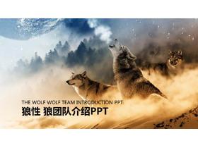 狼群背景的狼性�F�文化PPT模板