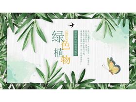 绿色清新植物叶子PPT模板免费下载