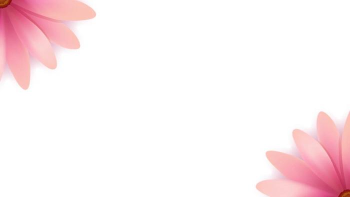 一组粉色精美花瓣PPT背景图片