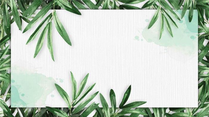 四张植物叶子PPT边框素材