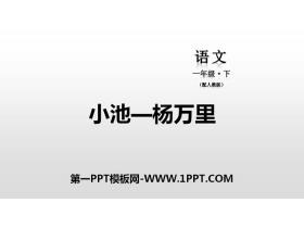 《小池》PPT