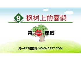 《枫树上的喜鹊》PPT(第一课时)