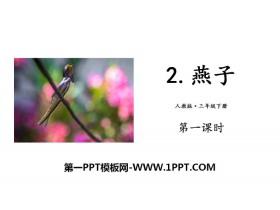 《燕子》PPT下载(第一课时)
