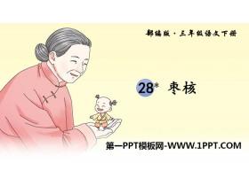 《枣核》PPT教学课件