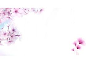 三��粉色唯美桃花PPT背景�D片