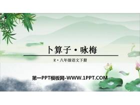 《卜算子・咏梅》课外古诗词诵读PPT