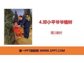 《邓小平爷爷植树》PPT课件(第2课时)