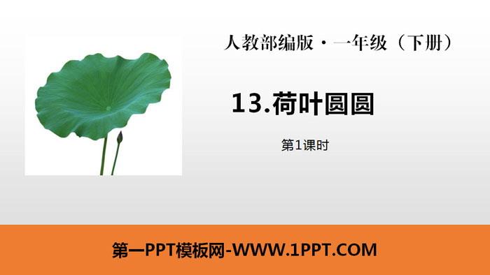 《荷叶圆圆》PPT课件(第1课时)