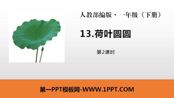 《荷叶圆圆》PPT课件(第2课时)