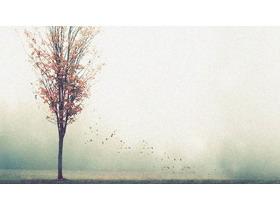 反冲效果的小树必发88背景图片