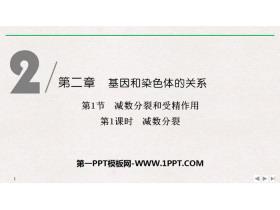 《�p�捣至押褪芫�作用》基因和染色�w的�P系PPT�n件(第1�n�r�p�捣至�)