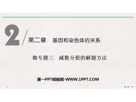 《微�n}三 �p�捣至训慕忸}方法》基因和染色�w的�P系PPT�n件