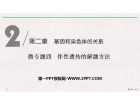 《微�n}四 伴性�z�鞯慕忸}方法》基因和染色�w的�P系PPT�n件