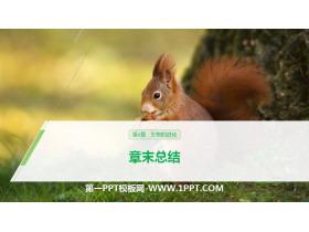 《章末总结》生物的进化PPT