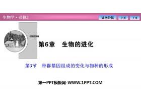 《种群基因组成的变化与物种的形成》生物的进化PPT下载