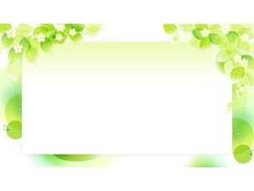三��清新植物�G�~PPT背景�D片