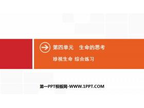 《珍�生命》生命的思考PPT(�C合��)