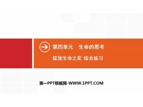 《�`放生命之花》生命的思考PPT(�C合��)